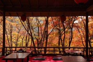 Kyoto_Autumn_Leaves_Nature_Japan