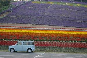Saika_Farm_Nakafurano_Hokkaido_Japan