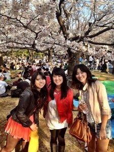 Happy_Hanami_Japan