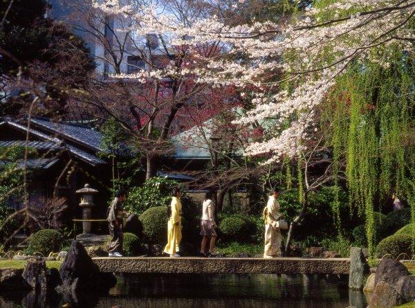 Japanese_Garden_in_Spring