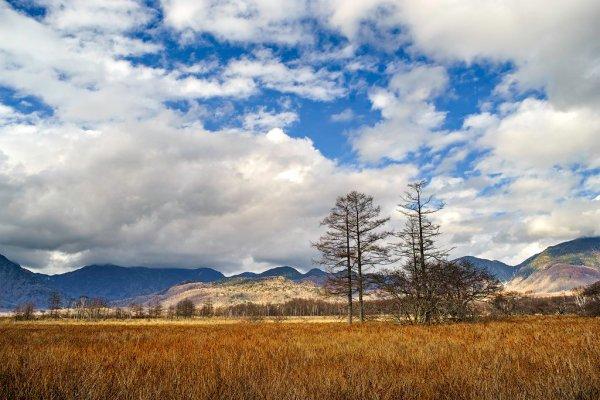 senjogahara_marshland_autumn_colors_nikko_tochigi