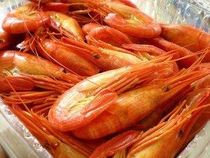 hokkai_shima_ebi_shrimp_kamiyubetsu