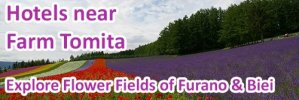 hotels_lavender_field_in_furano