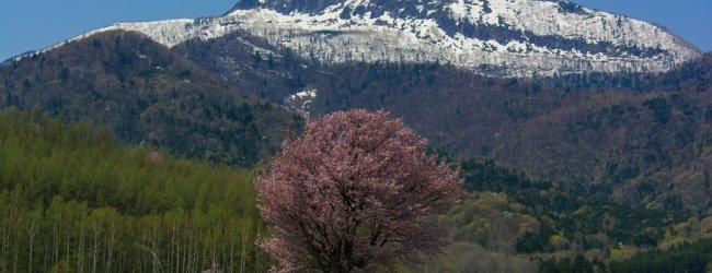 Hokkaido Spring Itinerary | Travel Plan 2016
