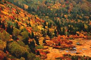 hakkoda_mountains_fall_colors