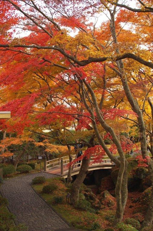 hakone_museum_of_art_fall_colors