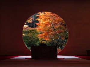 meigetsuin_temple_fall_colors