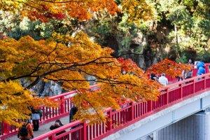 taigetsukyo_bridge_autumn_colors