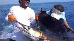 peche-a-la-mouche-en-mer-sailfish