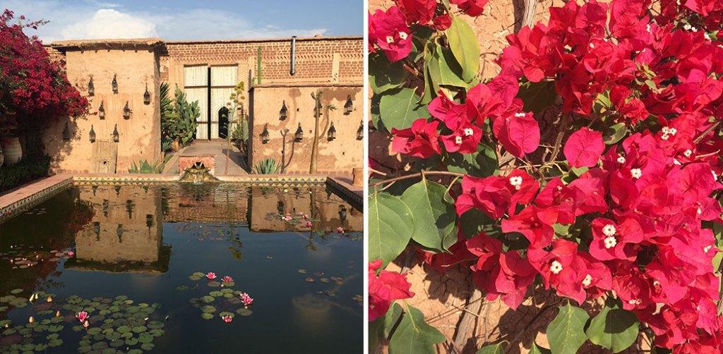 cityguide-marrakech-bonne-adresse-medina-restaurant-spa-beld--country-club-desert-piscine-2