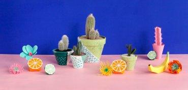 cactus-merci-raymond-x-la-seinographe-couv