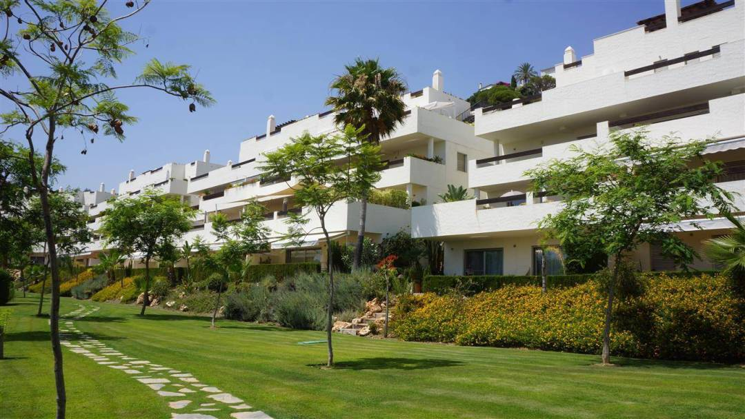 la azalia apartments for sale