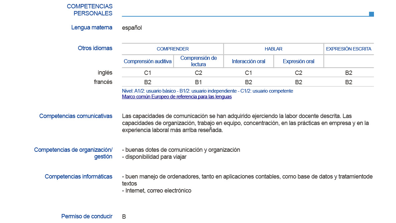 competencias informaticas cv