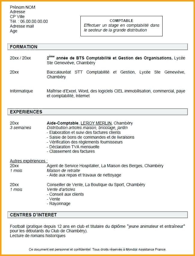 exemple de cv professionnel job dete