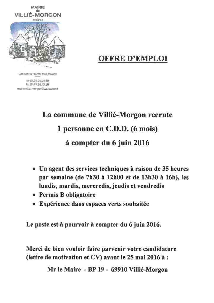 cv stage espace vert mairie exemple