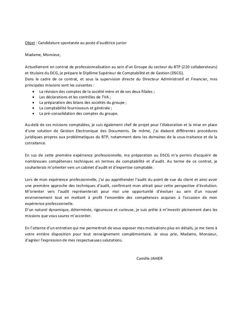chef de publicite formation cv