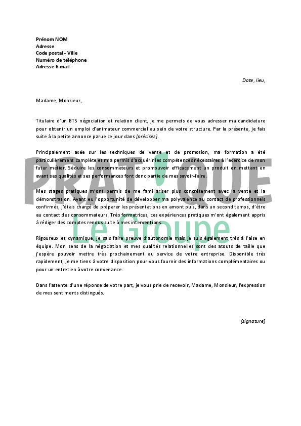 cv stage pratique amp