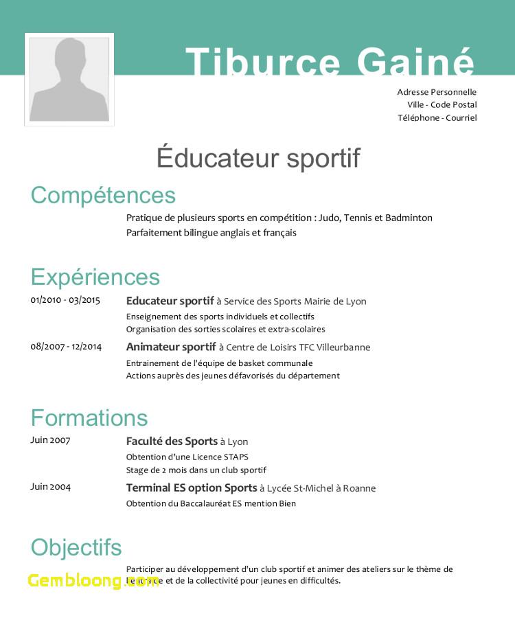 competence professionnelle cv moniteur educateur