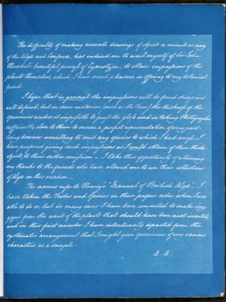 cyanotype-anna-atkins-algue-a01