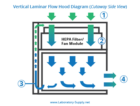 Horizontal vs Vertical Laminar Flow Hoods - Lab Supply Network