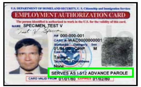 USCIS Starts Issuing a Single Combined EAD/Advance Parole Card - sample employment authorization form
