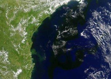 La siniestra mancha negra gigante de la costa brasileña