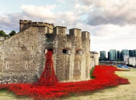 """La Torre de Londres """"sangra"""" amapolas por el centenario de la I Guerra Mundial"""