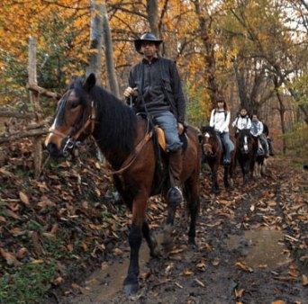 Paseos a caballo en Asturias con niños