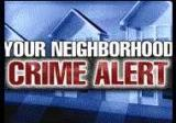 01 - Neighborhood Crime Alert