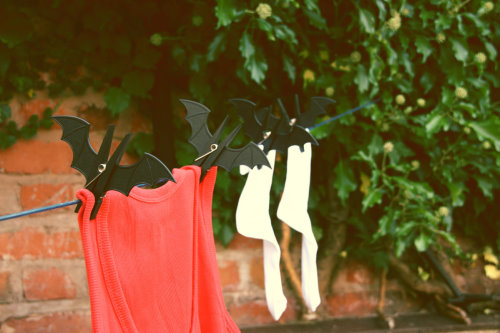 Bat Clips for Your Washing Line