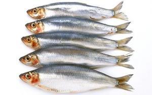 Pesce con omega 3: sano sì, ma troppo può causare diabete
