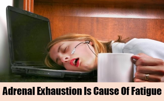 Adrenal Exhaustion Is Cause Of Fatigue