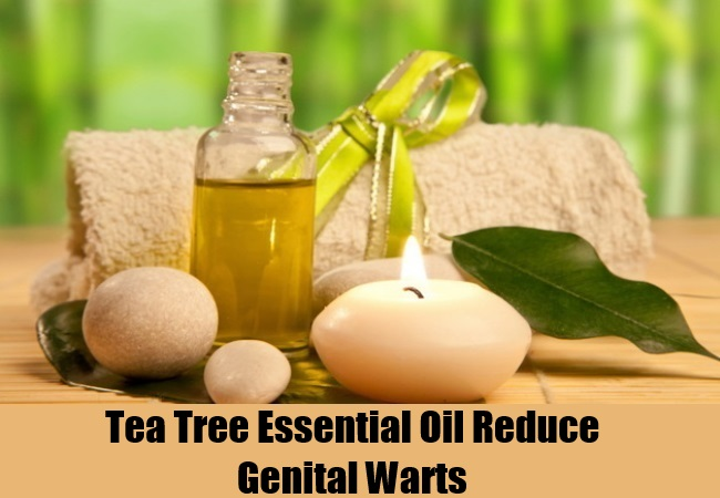 Tea Tree Essential Oil Reduce Genital Warts