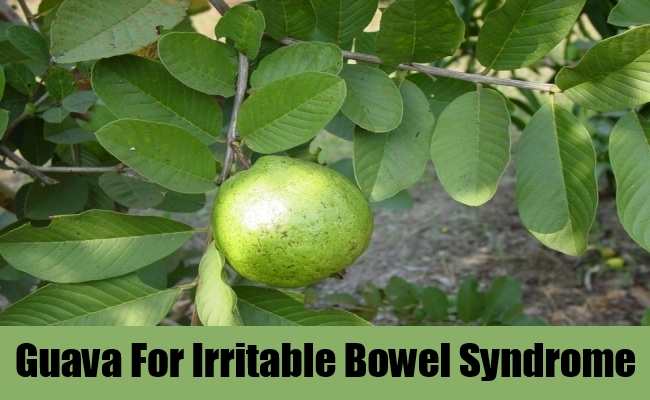 15 remedies for irritable bowel syndrome lady care health guava helps to prevent gas and constipation eat one ripe guava 30 minutes prior to your meals to treat constipation ccuart Image collections