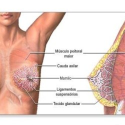 Causes For Breast Soreness