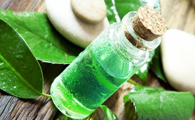 Tea Tree Oil Helps In The Problem