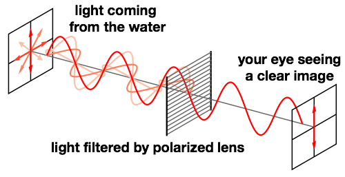 The Difference Between Good and Bad Polarized Sunglasses Louisiana