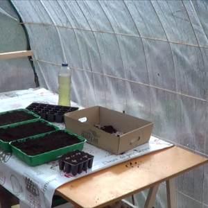Instalando Mesa De Semilleros En El Invernadero