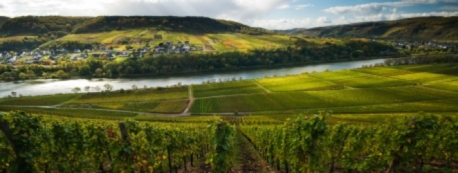 Finger Lakes Wine Region Earning More Recognition