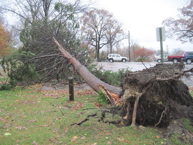 Storm damage seen across Lakewood as Sandy's side effects strike Northeast Ohio | cleveland.com