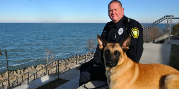 Police Department's New K-9, Dano, Begins Service in Lakewood