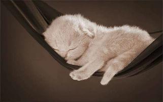 3 segnali di pericolo di un cattivo riposo