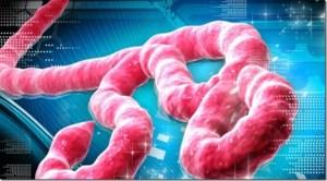 El MMS, el ébola y los irresponsables
