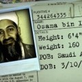Osama Bin Laden Fugitive