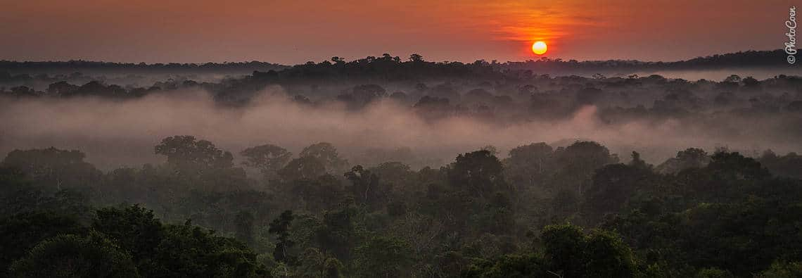 Sunrise over the Amazon, West Brazil (©photocoen)