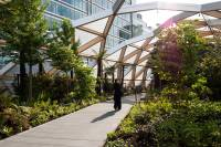 Crossrails Station Roof Garden by Gillespies  Landscape ...