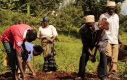 Community collaboration to fight climate change