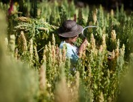 Woman farmer, Peru