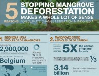 INDONESIAN_MANGROVES_SPECIAL__Millions_of_reasons_to_love_mangroves___CIFOR_Forests_News_Blog