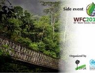 WFC-GLF-roadmap-event---post